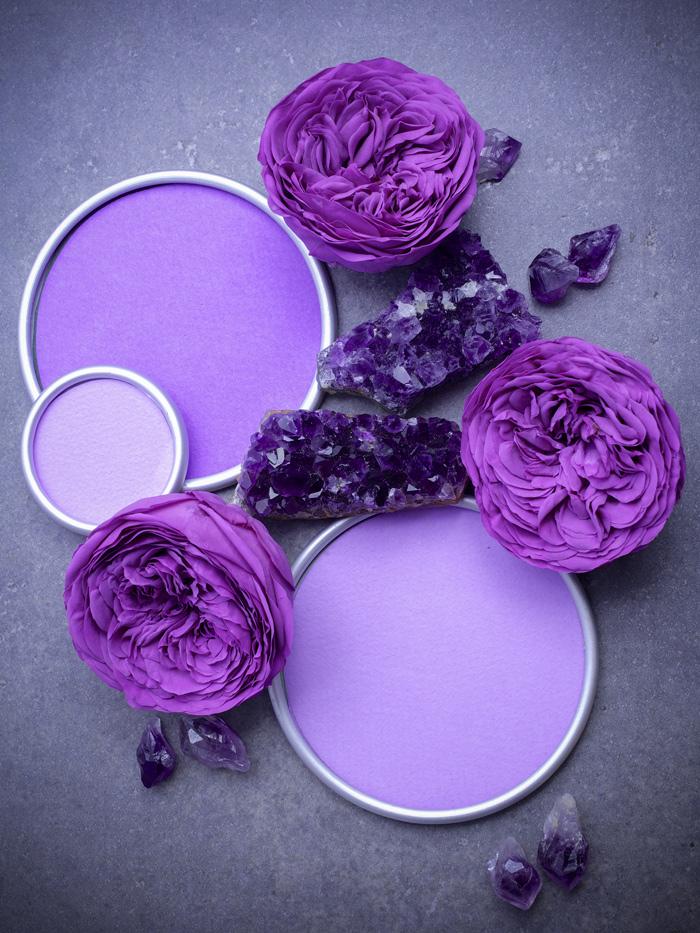 Violette Farbtöne liegen voll im Trend