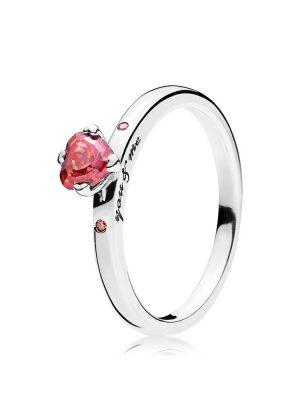 Pandora 196574CZRMX Ring You & Me Gr. 50